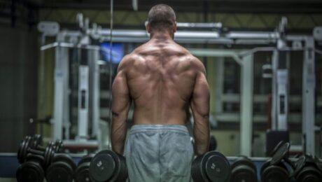 Nackenschmerzen; Trapeztraining; Rückentraining;